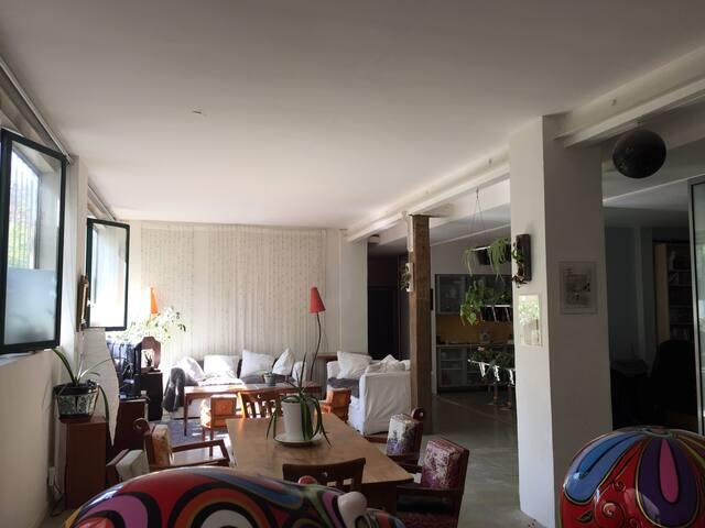 Appartement/Loft - Paris - Loft