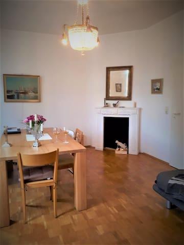 Room in elegant apartm. in the heart of Jena
