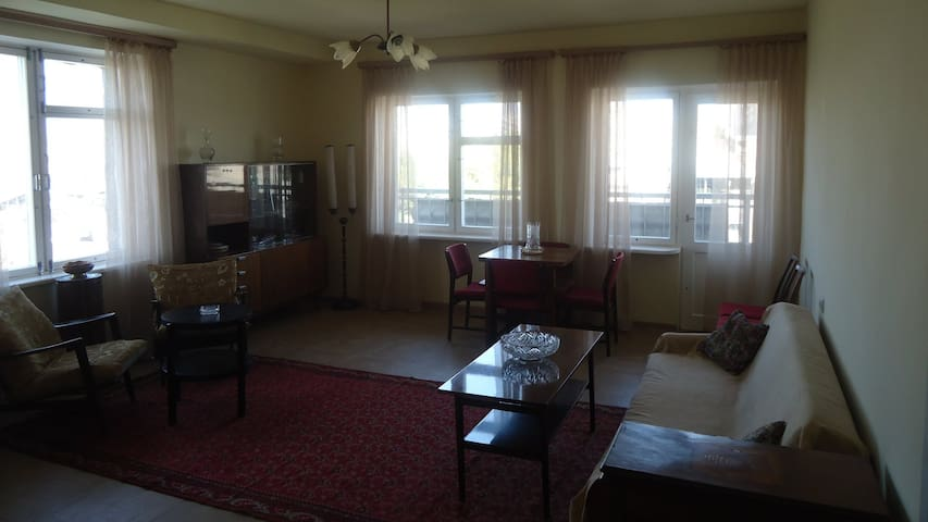 Spacious Sunny flat near Davit Anaht park - Yerevan - Apartment