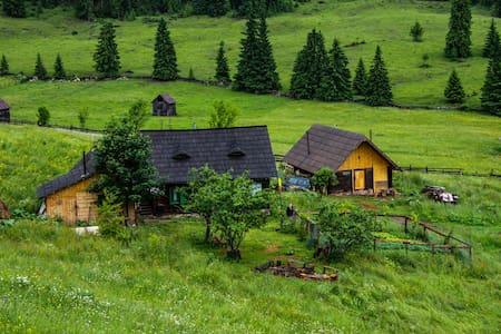Bucovina mountain getaway - Fluturica guesthouse