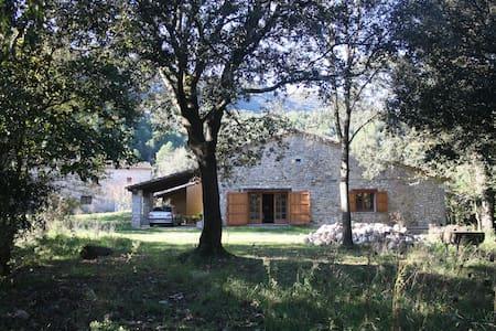 LA CABANA D'ALBANYÀ;  cabaña de piedra S-XVII - Albanyà
