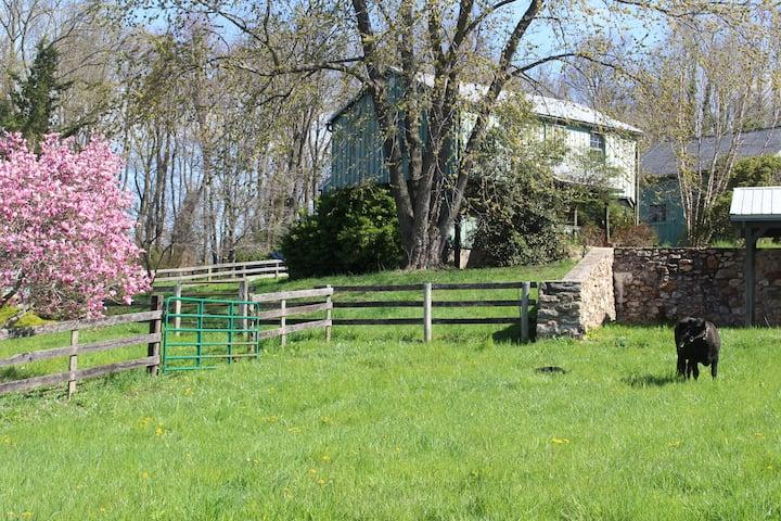 Cozy Farmhouse Studio