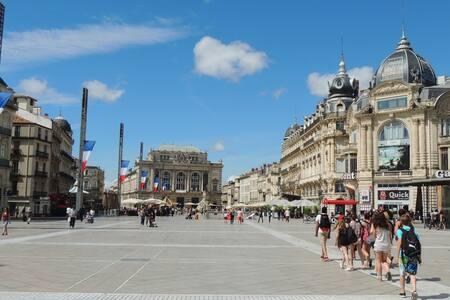 Studio  mezzanine / Centre ville de Montpellier - Montpellier - Apartment