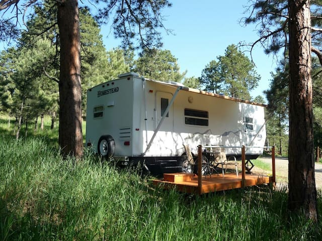 RV in the Pines! - Evergreen