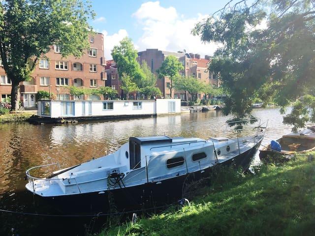 adventurous little boat, area de Pijp (NO shower) - Amsterdam - Boat