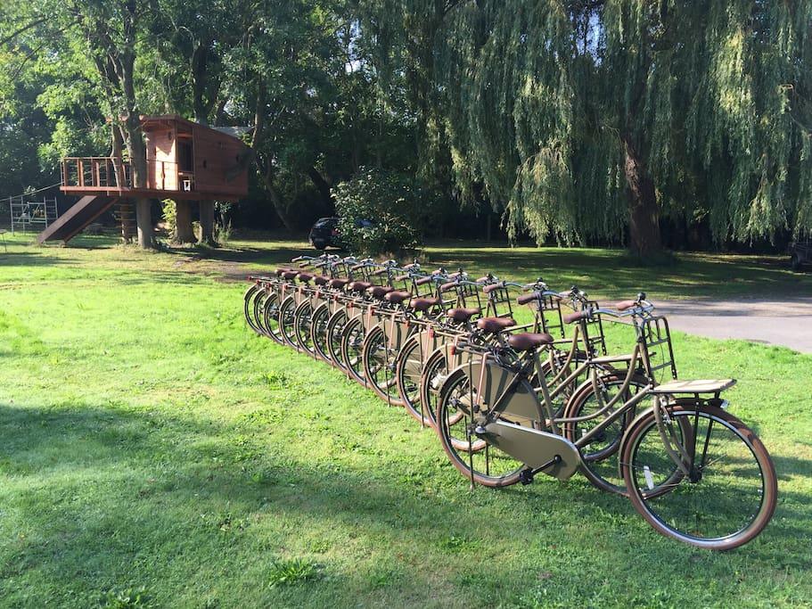 Villa Louis beschikt over 12 comfortabele fietsen die het verblijf nog aangenamer maken... Een fietstochtje langs het strand, of naar het centrum, of via één van de vele fietsroutes, het kan allemaal...
