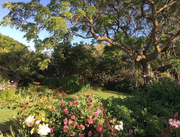 Garden Vista