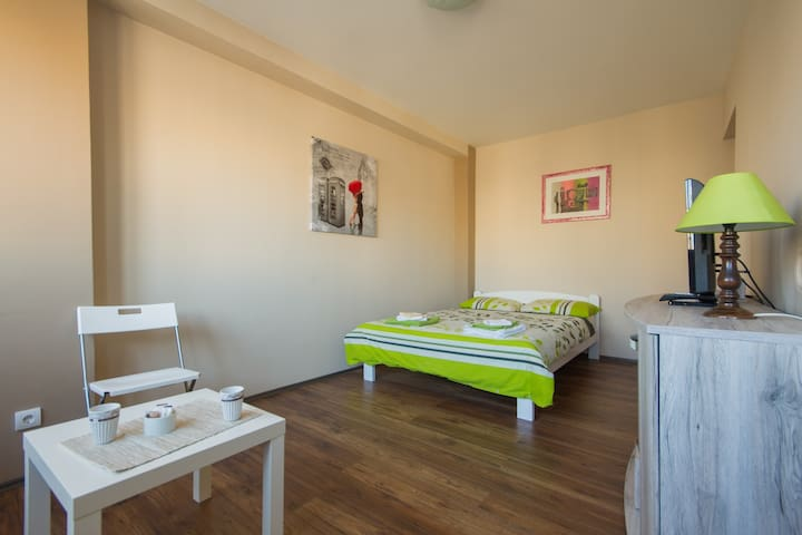 Central view apartment :) - Beograd