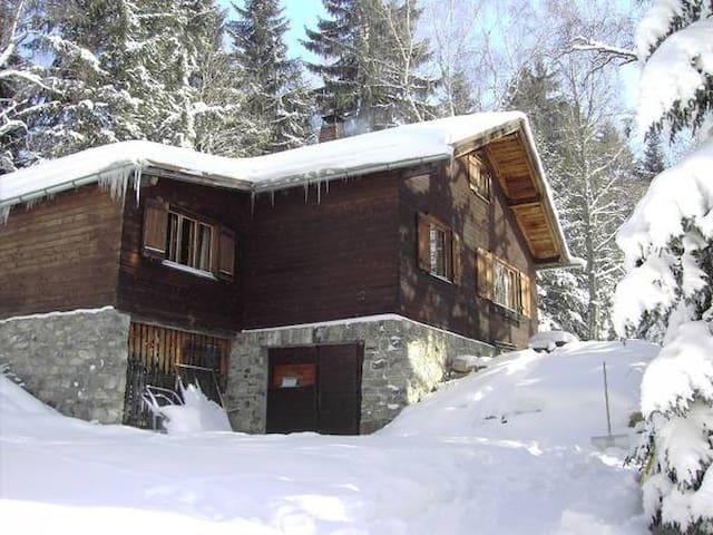 Rustikales Blockhaus in den Alpen