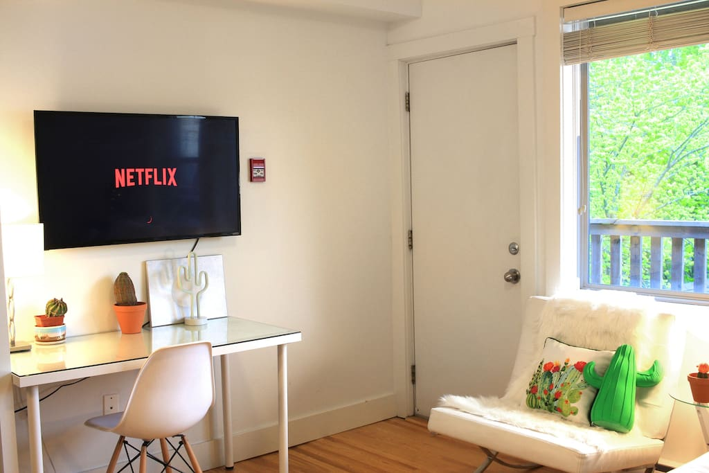 A 45' tv with streaming Netflix.
