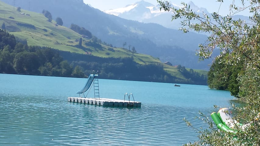 Lake & Mountains, the ideal combination - Lungern - Apartment