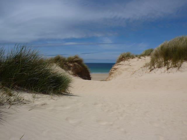 Gwithian Beach Chalet: Oystercatcher