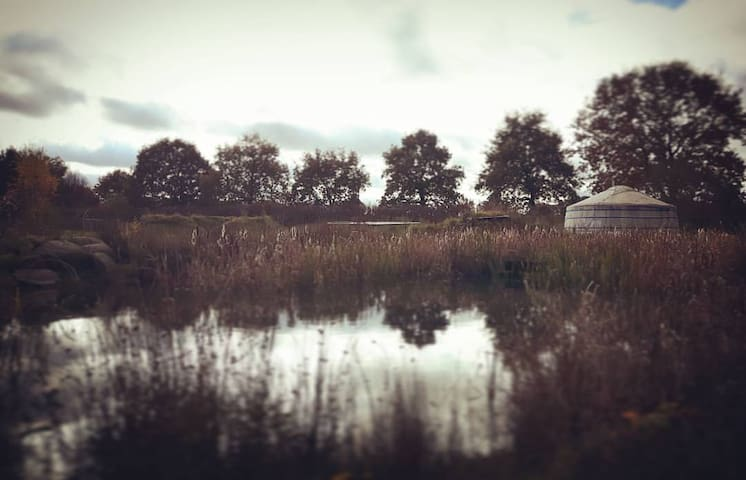 Ontspannen in de natuur op een magische plek! - Elp - Yurt