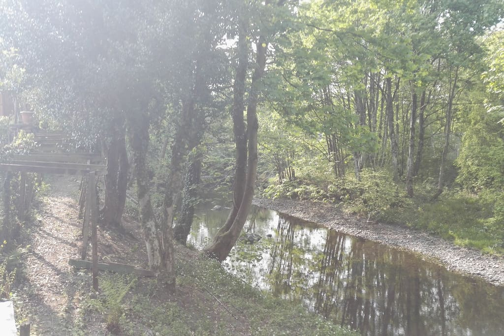 Garden including the river Kent with private access