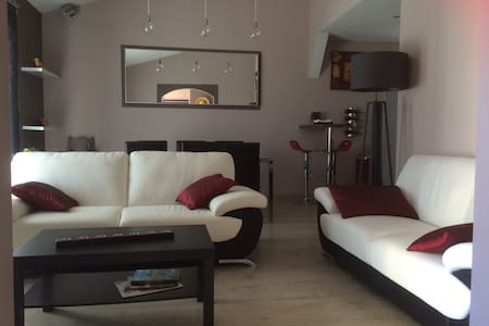 Villa avec SPA prox Cité & aéroport - Arzens - Vila