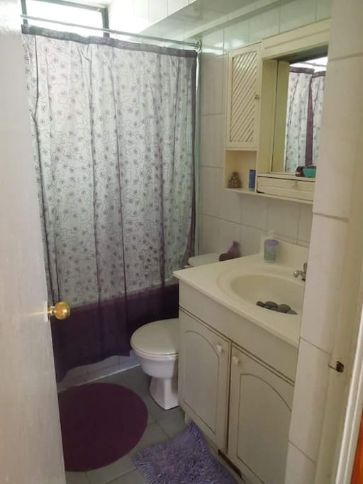 baño principal de la casa, se comparte principalmente la ducha con los que vivimos.