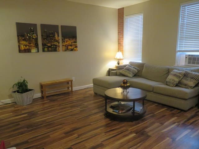 Beautiful Downtown Pittsburgh Apt with View