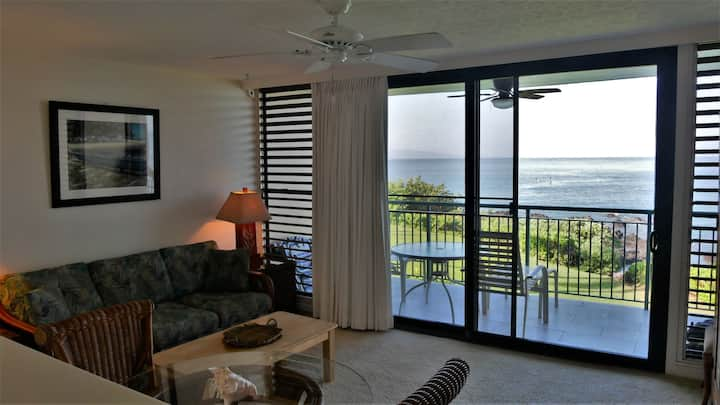 Oceanfront One bedroom unit 203