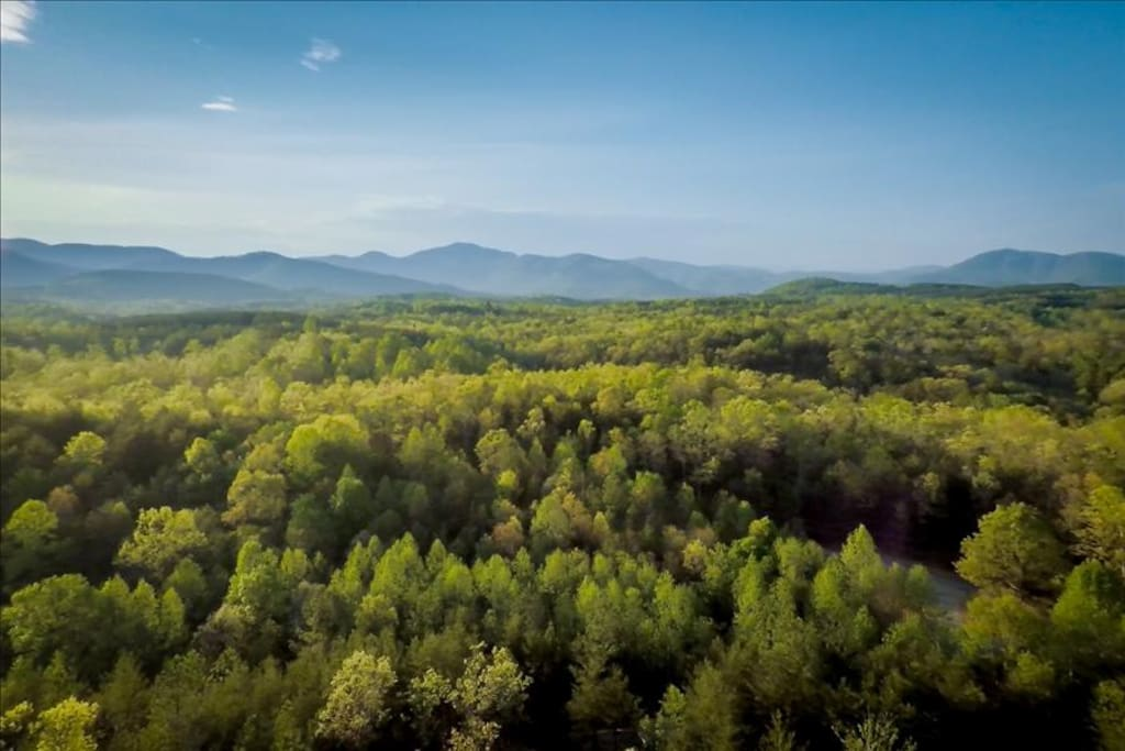 Enjoy all the Blue Ridge Foothills have to offer