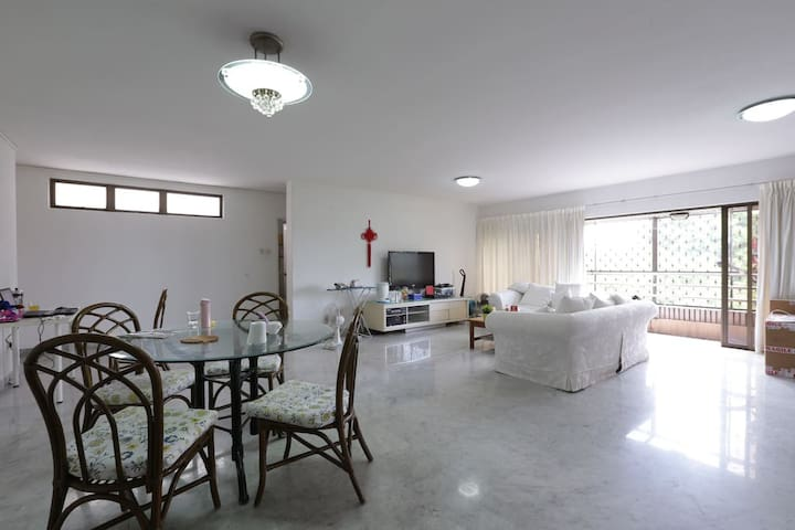 Spacious master room near central - Singapore - Appartement