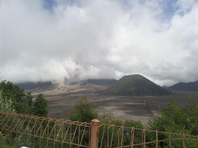 Superior Cemara Indah at Cemara Lawang, Bromo