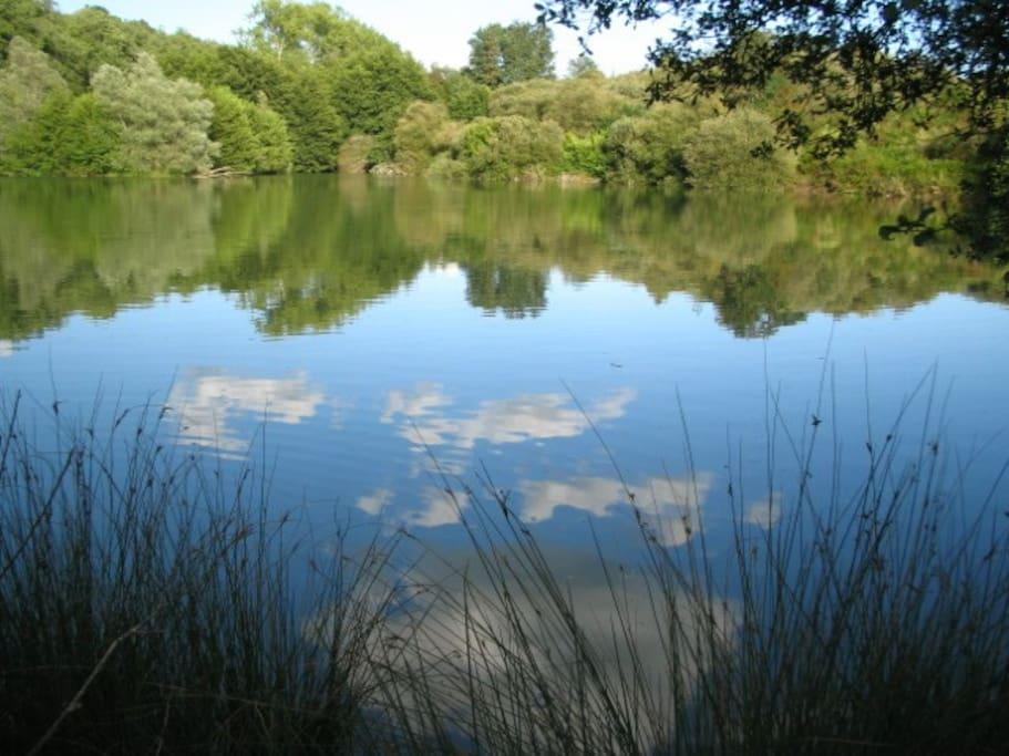 swimming lake 1ha