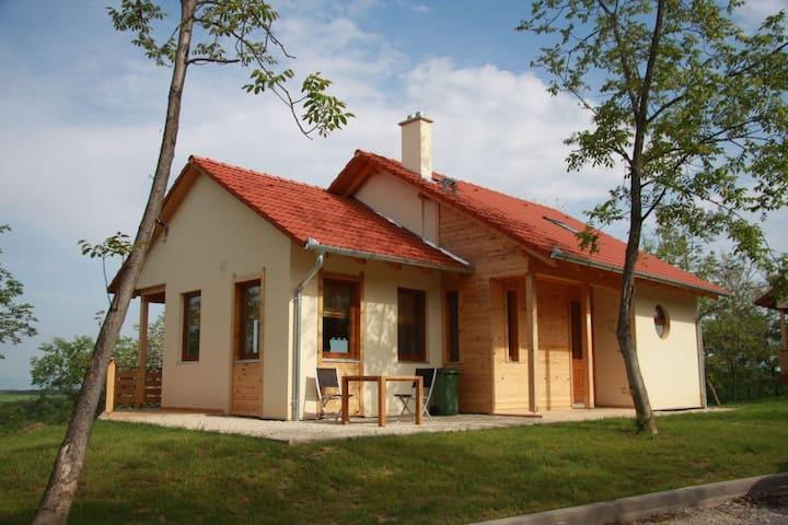 Moderne ruime villa gelegen nabij het Balatonmeer