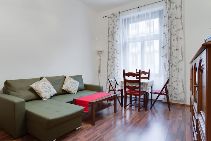 Nice One Bedroom Apartment Cheap Apartments For Rent In Prague Prague Czech Republic