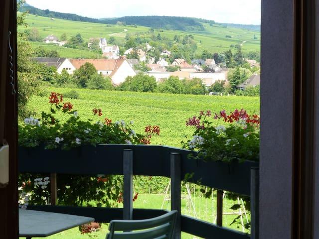 gîte charme Ribeauvillé,balcon,vue vignes 2/4 per - Ribeauville - Wohnung