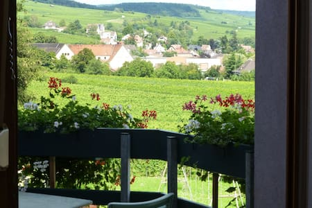 gîte charme Ribeauvillé,balcon,vue vignes 2/4 per - Ribeauville - Διαμέρισμα