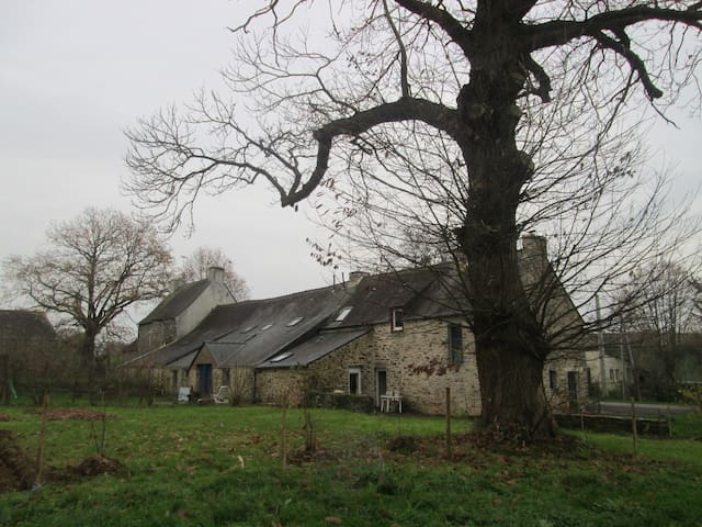 Maison à la campagne - Peillac - Hus