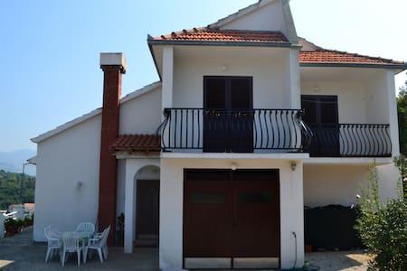 Holiday house in Račišće bay, Korčula island - Račišće