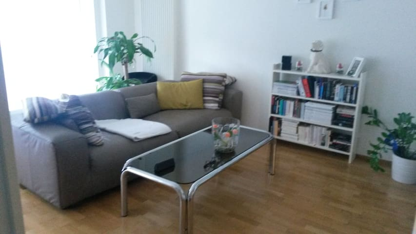 cozy 1 bedroom apartment with 2 lovely cats - Köniz - Condominium