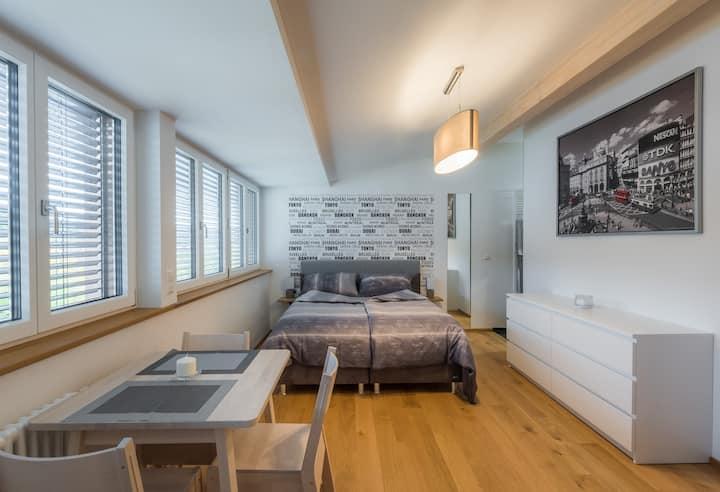 Panorama-Apartment (3) im stilvollen Altbau