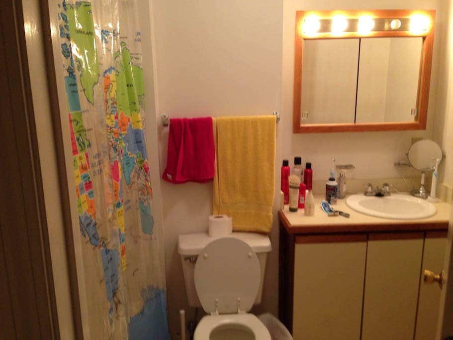 This is the bathroom, with a fun world map shower curtain