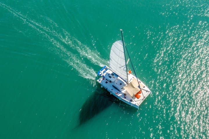 Overnight experience on sailing cat - Phuket - Barca