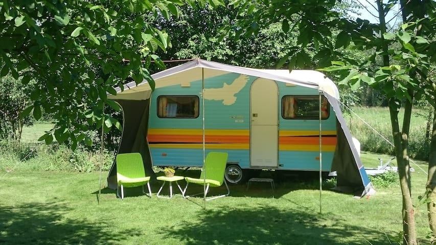 Retro caravan in natuurtuin