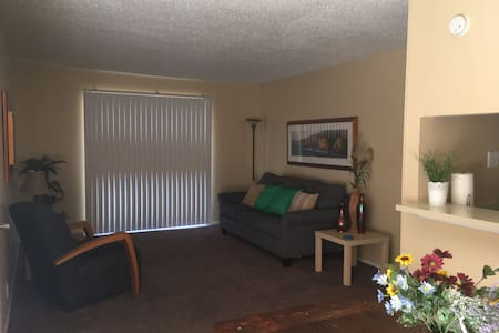 Spacious one bedroom apartment near A&M - Bryan