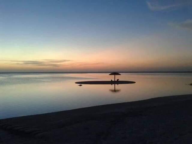 PALM REST, Kaashidhoo, Maldives