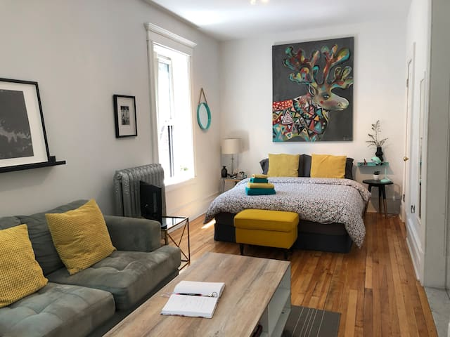 Cozy and spacious apartment downtown