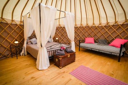 """Puy de Sancy"" Tranquil yurt with beautiful views"