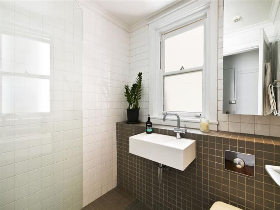 Renovated bathroom with high-powered shower.