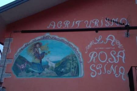 Agriturismo La Rosa Spina