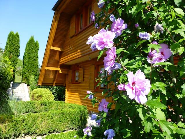 Kuća za odmor  GRGA  **** - Donja Voća - Huvila