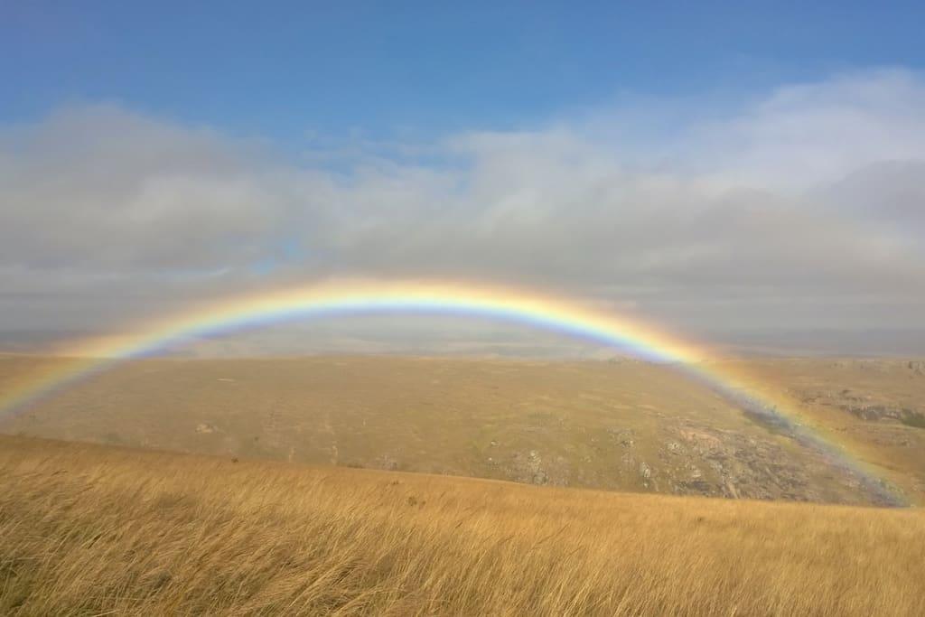Rainbow Country