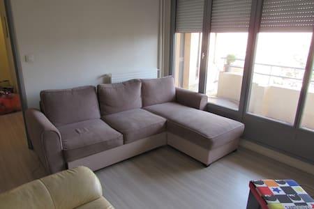 Chambre/salon privé avec grand lit convertible - Lyon-9E-Arrondissement