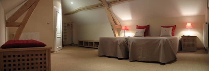Twin attic room with view of the vineyard