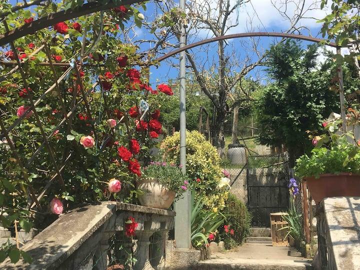 Maison au calme dans jardin et lumières