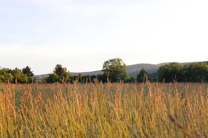 Succurro : Farm Retreat Apartment