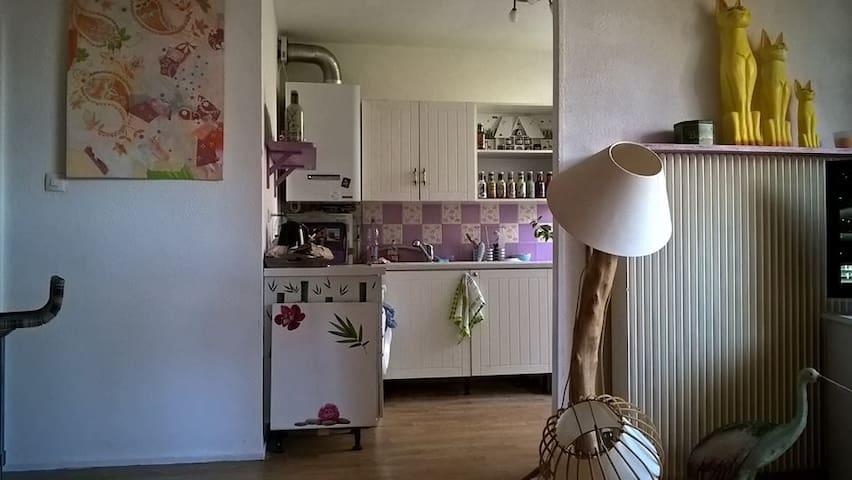 Loue chambre dans appartement au calme - Bavilliers - Casa de hóspedes